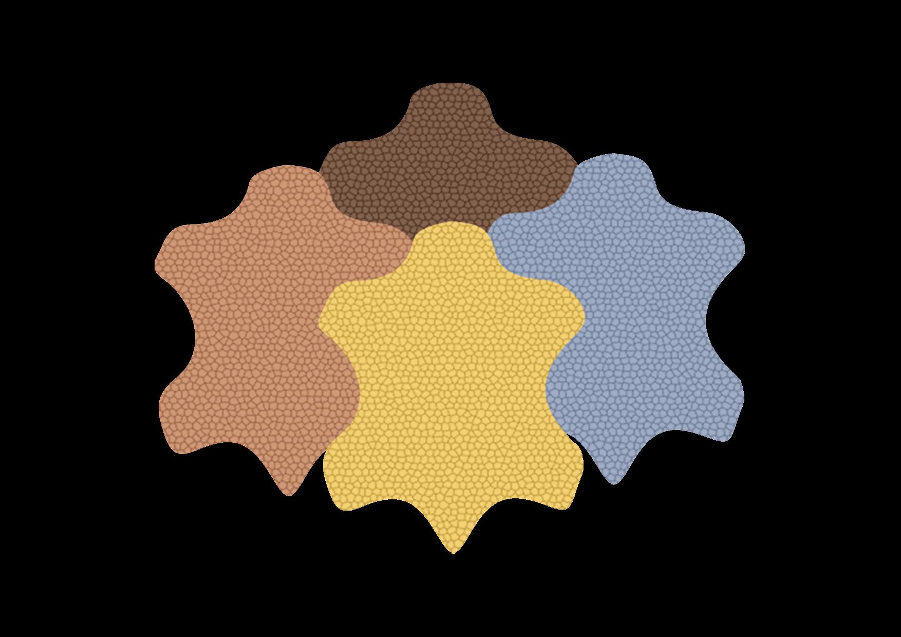 Lederhäute in 4 Farben